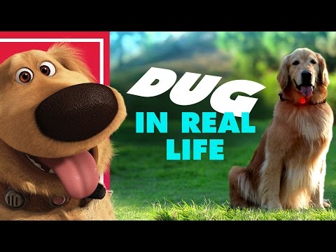 Disney•Pixar's Dug the Talking Dog In Real Life via Oh My Disney